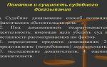 Фальсификация доказательств в арбитражном процессе: правовое регулирование и ответственность, составления заявления