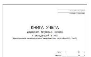 Хранение и учет трудовых книжек в организации: место и срок, ответственные лица, порядок выдачи документа работнику на руки