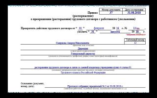 Приказ об увольнении генерального директора по собственному желанию: образец документа и порядок подписания