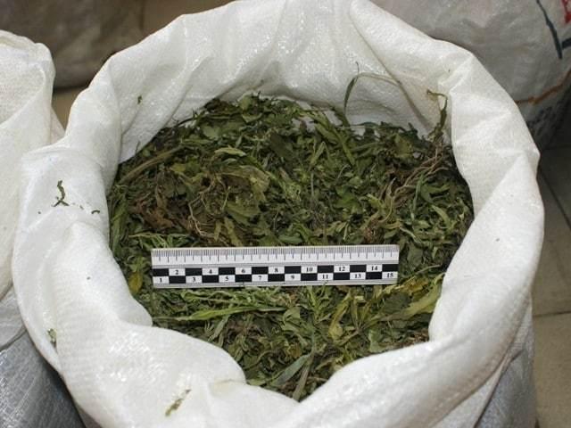 Незаконное хранение наркотиков и психотропных веществ: ответственность по нормам УК РФ, срок за преступление, понятия особо крупного размера и незначительного количества