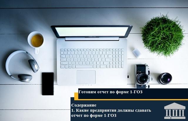 Ежемесячный отчет об исполнении для ЕИС Гособоронзаказа: форма 1-ГОЗ и образец заполнения