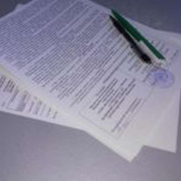 Образец заявления в полицию об оскорблении личности: какие сведения должен содержать документ и куда обращаться?