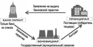 Банковская гарантия по 223-ФЗ: требования к банку, срок действия и сумма, образец формы