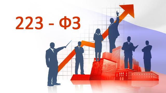 Что такое запрос цен по 223-ФЗ? Понятие процедуры, порядок проведения, требования к документам